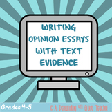 RISE, SAGE and FSA writing test prep: Opinion writing ~ Di