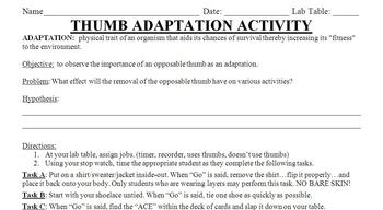 Opposable Thumb Adaptation Lab Activity