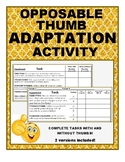 Opposable Thumb Adaptation activity/ experiment/ application: Natural Selection