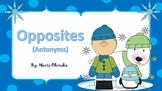 Opposites (Antonyms) Game