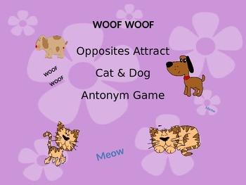 Opposites Attract / Antonyms