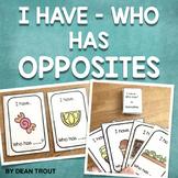 Language,Vocabulary: Opposites Card Game