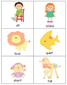 Opposites - Flashcards, Tracing Cards, Flip Books (lowercase letters)