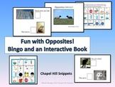 Opposites Fun!  Interactive Book and Bingo Game (Special Education, SLP)