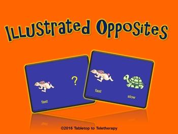 Opposites (Illustrated)