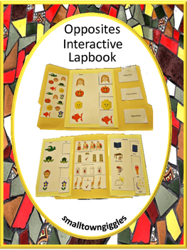 Interactive Lapbook Opposites, Autism, Pre-K, K, Special Education