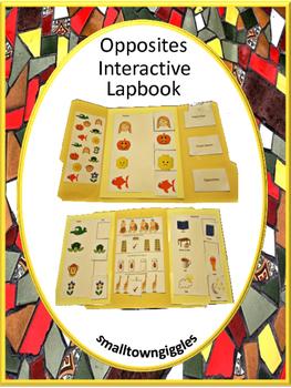 Interactive Lapbook Opposites, Autism, Pre-K, K, Special E