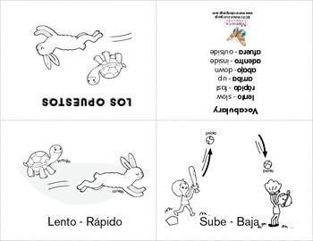 Opposites {Los Opuestos Spanish Bundle}