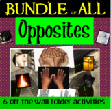 Opposites: Off The Wall File Folder Activities BUNDLE special education