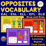 Opposites Vocabulary for All