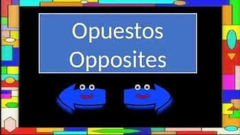 Opposites in Spanish (II)