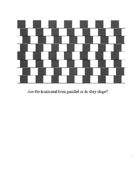 Optical Illusions Activity for Middle & High School