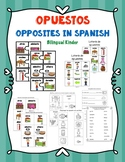Opuestos - Opposites in Spanish