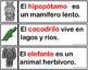 Oraciones de los Animales Fluidez Animal Sentences Fluency Mrs.Partida