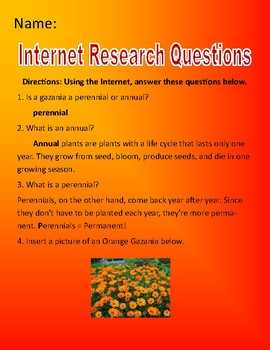 Orange Gazania Microsoft Publisher/Internet Research Assignment