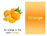 Orange Mini Book