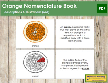 Orange Nomenclature Book (Red)