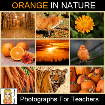 Orange in Nature Photograph Pack
