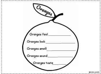 Oranges - 5 Senses Publishing