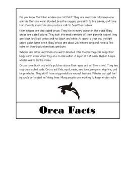 Killer Whale/ Orca Flip Book