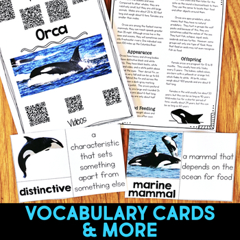 Orca: Informational Article, QR Code Research & Fact Sort