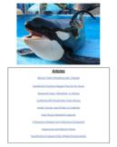 Orca Whale Debatable Topic Hyperdoc