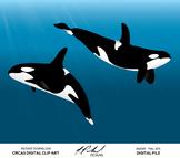 Orca Whale Digital Clip Art - Digital File - Killer Whale Clipart - Vector Whale