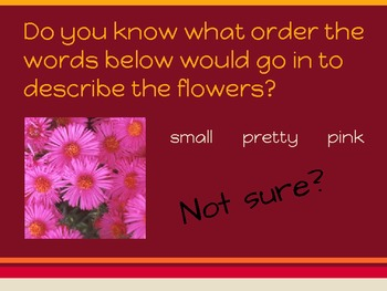 Order of Adjectives-CCSS L.4.1d PDF Powerpoint