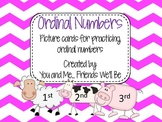 Ordinal Numbers - Picture Cards