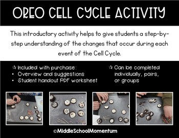 Oreo Cell Cycle Activity