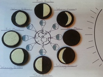 Oreo Moon Phases Worksheets (Space Science/ Astronomy Unit)