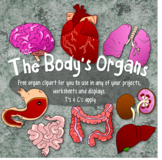Organ Clip Art