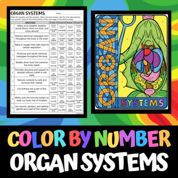 Organ Systems - Color by Number