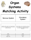 Organ Systems Matching Game