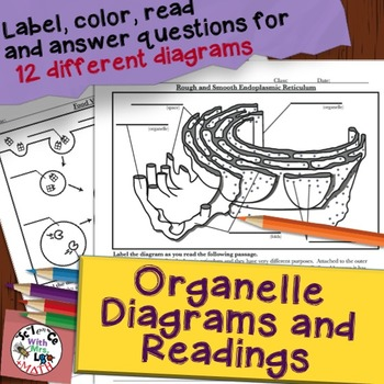 Organelle Diagram and Question Coloring Pages