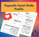 Organelle Facebook Page