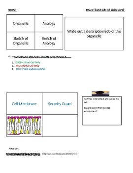 Organelle Flashcard Instructions