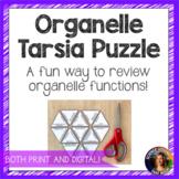 Organelle Tarsia Puzzle