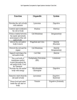 Organelles Compared to Systems Handout/ Word Sort