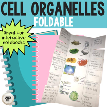 Organelles - Foldable