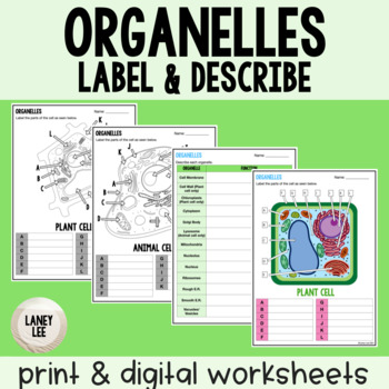 Organelles - Label and Describe