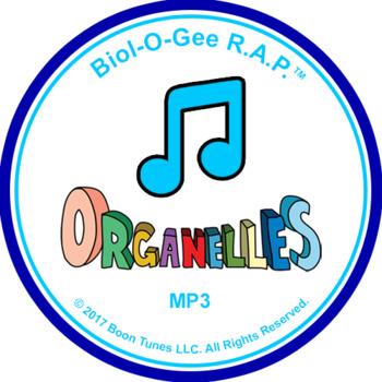 Organelles: Mp3 - Biol-O-Gee R.A.P.