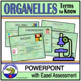Cell Organelles Biology PowerPoint