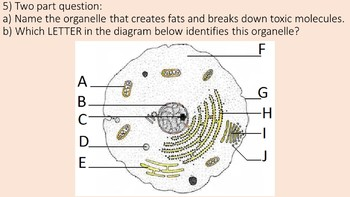 Organelles of the Cell Challenge Game