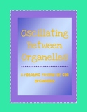 Organelles review activity- rotating practice