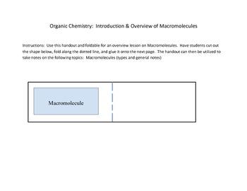 Organic Chemistry: Macromolecules Notes Template/Handout
