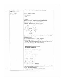 Organic Compound Notes Outline