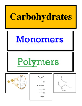 Organic Compounds Sorting Activity: Monomers and Polymers