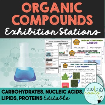 Organic Compounds Task Cards- Macromolecules