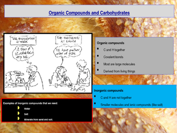 Biochemistry - Organic Compounds and Carbohydrates